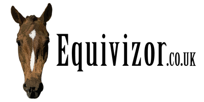Equivizor Fly Mask (with nose flap) - XLarge - Equivizor - Advanced Head Protection For Horses